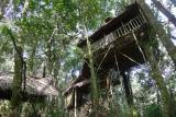 和平农场树屋
