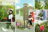 搭公车啦!!!冲绳最梦幻的国外小镇♡港川外人住宅