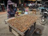 【柬埔寨】一美元的柬单小吃(上)