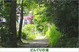 【トトロの森散策】龙猫森林的10个私房景点