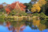 東京清澄庭園