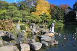 東京清澄庭園磯渡