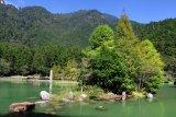 明池湖阿鹅的家