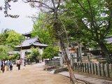 【日本廣島】用JR周遊券搭宮島渡輪-遊嚴島神社看海上大...