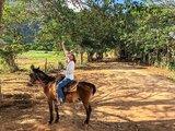 古巴 Viñales維尼亞萊斯 菸草田的故鄉