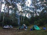 【澳洲露营】来趟以星空帷幕之旅!(租车、露营注意事项...