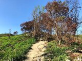【台中景点】学田山-乌日知高圳步道+雪莲登山步道(好汉坡)