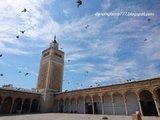 【突尼斯】伊斯兰的神秘面纱~ Tunis、Kairouan...