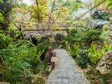 上山住一晚One Night In Ruifeng|竹林、茶園、螢火蟲,在瑞峰放慢腳步生活