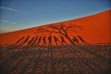 夏天到非洲避暑Part 1  纳米比亚死亡谷、银河与45号...