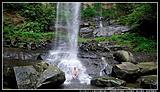 淡兰古道之三貂岭瀑布步道游(合谷瀑布、摩天瀑布、枇杷洞瀑布)