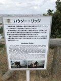 二战回忆录-探索冲绳岛战役之浦添大公园